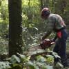 FORMATIONS POUR LES PROPRIETAIRES FORESTIERS à Meymac