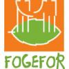 FORMATION FOGEFOR 2018 – Programme 2018