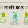 Infographie – La filière forêt-bois en France