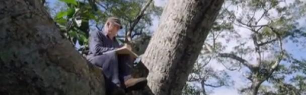 """Sortie au cinéma du film """"Il était une forêt"""""""