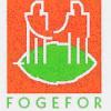 DECOUVERTE FORMATION FOGEFOR – Le 23 juillet 2015 à FEYTIAT (87) accès gratuit