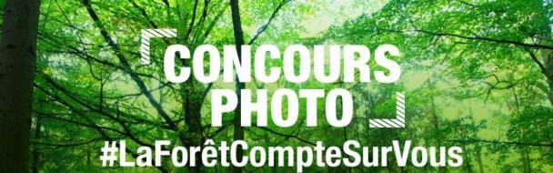 PEFC lance un concours international destiné aux passionnés de photographie… et de forêts !