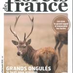 FORET DE FRANCE 615