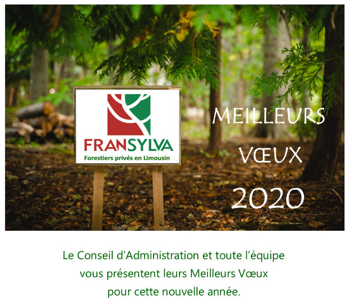 voeux-2020-mail