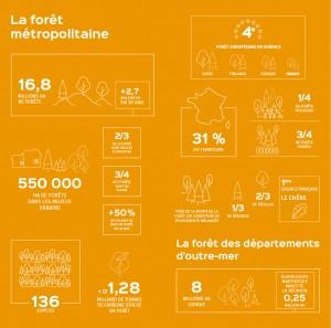 infographie_memento-2019