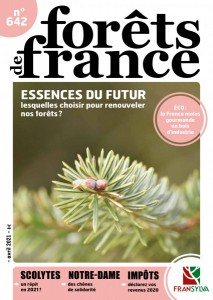 foretfrance642