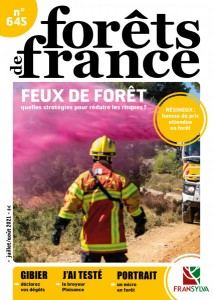 Foret de france645